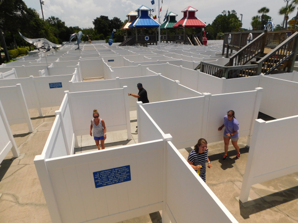 An image of a group trying to find their way through our Gran Maze in Panama City Beach, Florida.